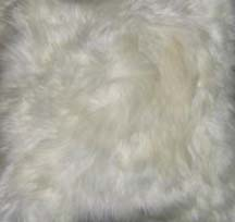 Closeup of Fur